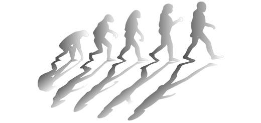 teoria de la evolución de darwin