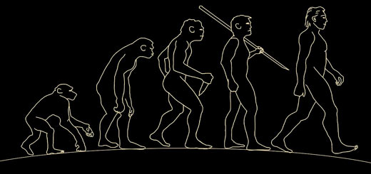 extinción evolución