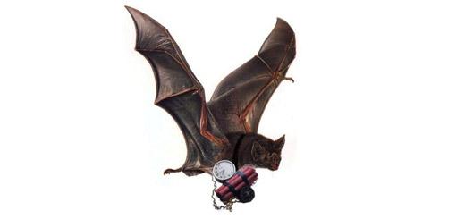 murciélago bomba